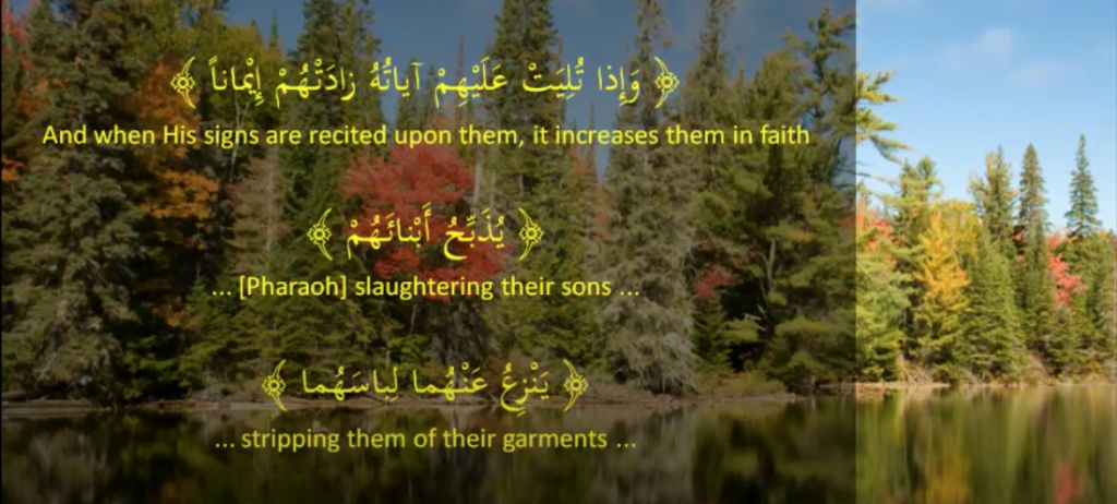 A Few examples from the Quran