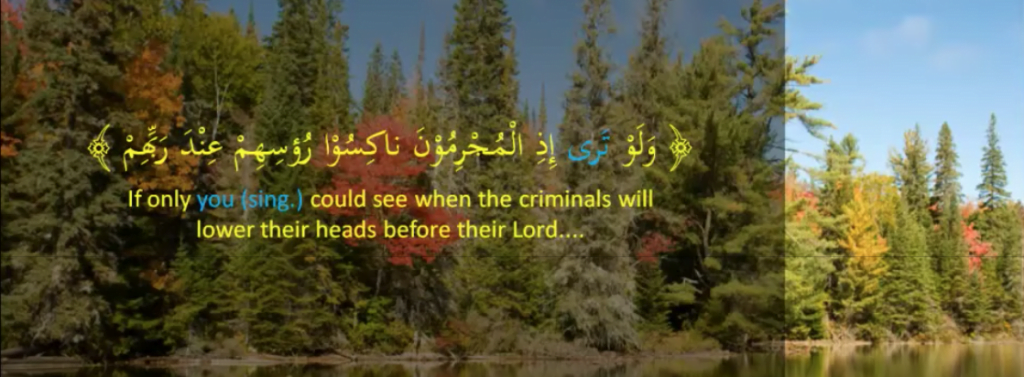 "Example of generic ""You"" from the Quran"