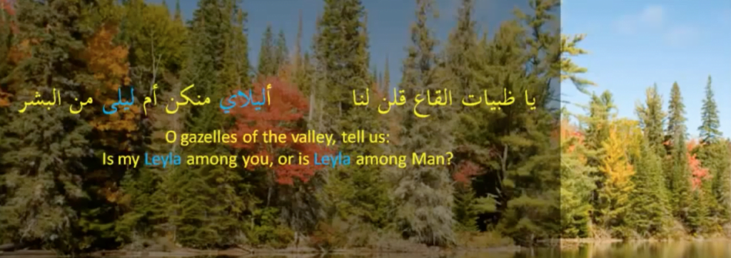 Arabic poetry example for using the name out of love
