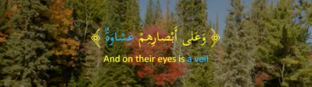Quranic example of nikara ism