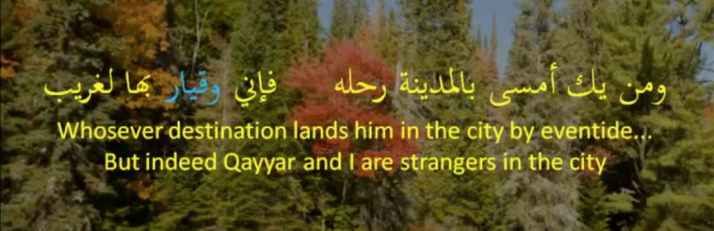 poetry of ضابئ بن الحارث