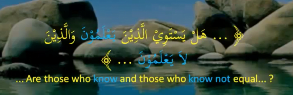 Quranic example of omitting the object and reducing the verb  to the level of the intransitive